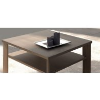 Low Table size 60 x 60 high 48 with Olmo color shelf.